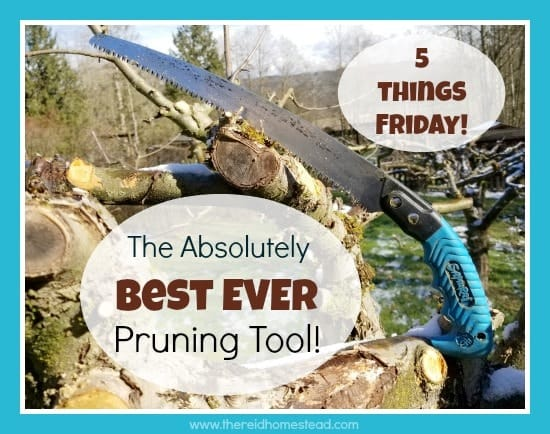 Favorite pruning saw Samurai 5 Things Friday with The Reid Homestead five favorite things of the week