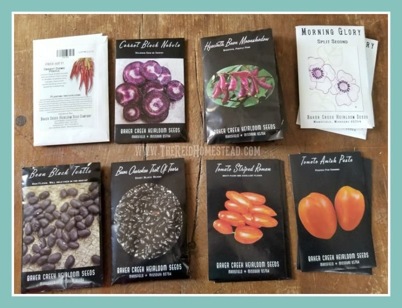5 Things Friday - Favorite Homestead Garden thing this week, my latest seed order has arrived! The Reid Homestead