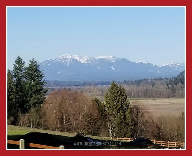 Mt Pilchuck mountain view and Snoqualmie Valley View in spring The Reid Homestead