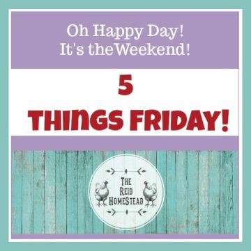 5 Things Friday - Favorite Homestead things this week! The Reid Homestead #homesteading #homesteadlife #happyhomesteading