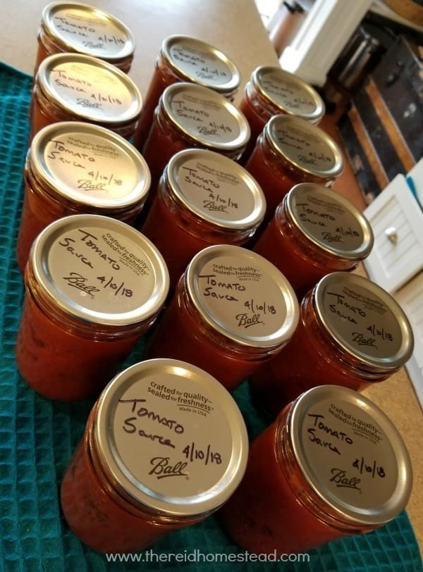 My tomato sauce all canned up from my frozen tomatoes that I harvested last year. The Reid Homestead #canning #tomatosauce #preservetheharvest
