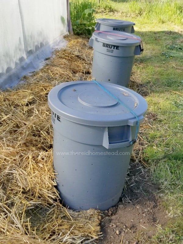 row of 3 plastic garbage cans used for composting