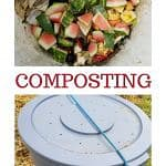 pinterest pin for easy composting method