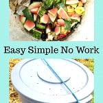 pinterest pin for composting tutorial