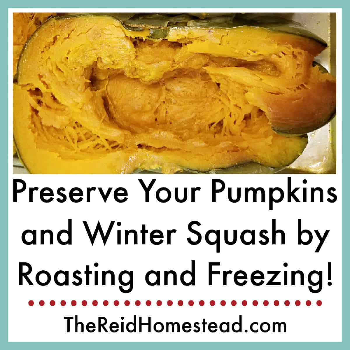 How to Preserve your Pumpkins and Winter Squash by Roasting and Freezing
