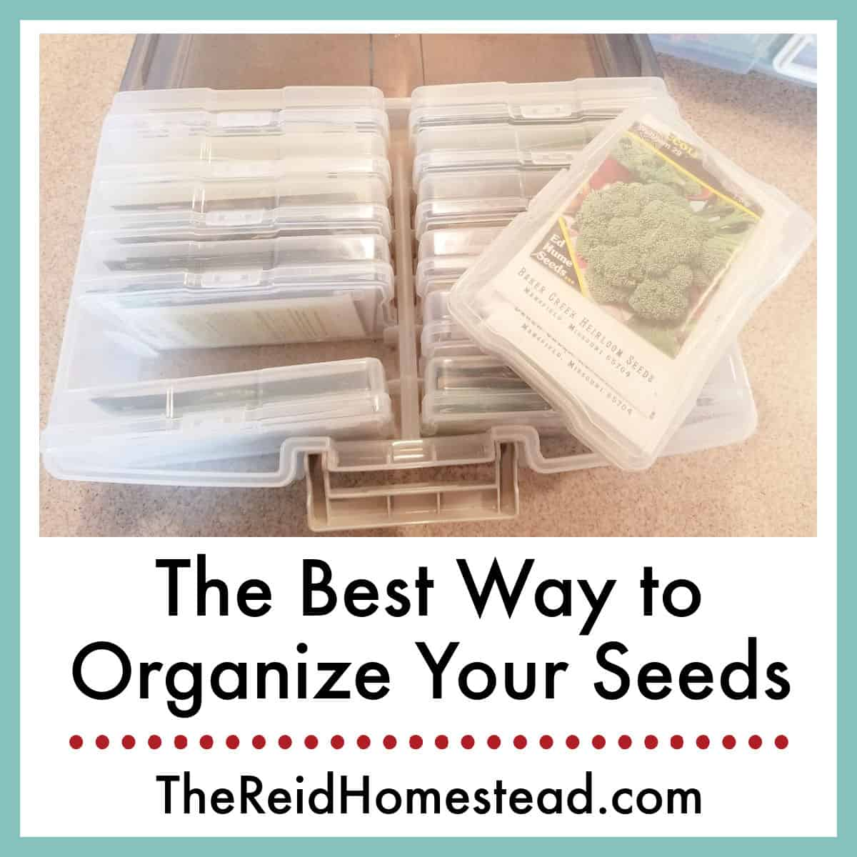 How to Keep Your Seed Stash Organized