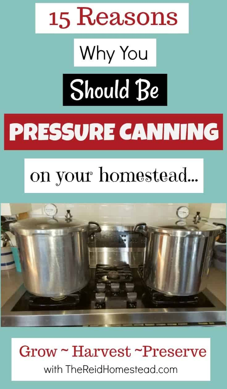 15 Reasons Wh You Should Be Pressure Canning on Your Homestead. Don't be scared! Pressure Canning is a must do and I will tell you why! ~The Reid Homestead #pressurecanning #canning #foodpreservation #homesteading #preservetheharvest #foodinjars #selfsufficient #preparedness