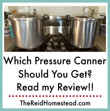 2 pressure canners on the stove with text overlay Which Pressure Canner Should You Get
