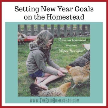 New Year Goals on the Homestead - The Reid Homestead #newyeargoals #goals #goalsetting #homesteadgoals #gardeninggoals