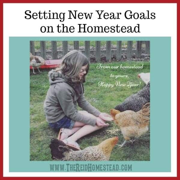 Setting New Year Goals on the Homestead