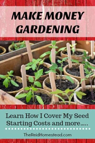 Learn how I make money growing plants at home with vegetable starts and more! ~The Reid Homestead #makemoneygardening #gardeningsidehustle #makemoneyathome #gardening #sellingplants #sellingvegetablestarts #vegetablegardening #seedstarting