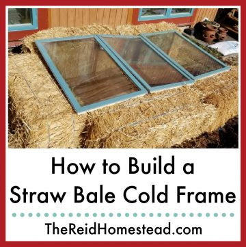 straw bale cold frame with text overlay How to Build a Straw Bale Cold Frame