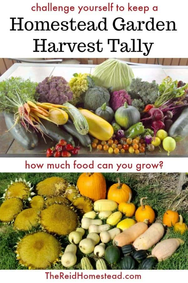 pinterest graphic with garden harvest images and text overlay Challenge yourself to keep a Homestead Garden Harvest Tally
