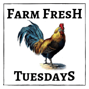 rooster with text overlay Farm Fresh Tuesdays