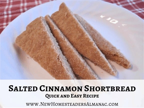 pieces of shortbread with text overlay Salted Cinnamon Shortbread Quick and Easy Recipe