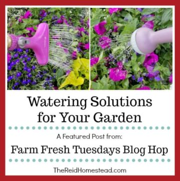 watering garden images with text overlay watering solutions for your garden
