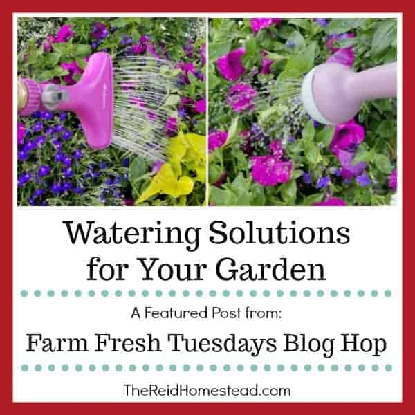 Watering Solutions – Farm Fresh Tuesday (#6)