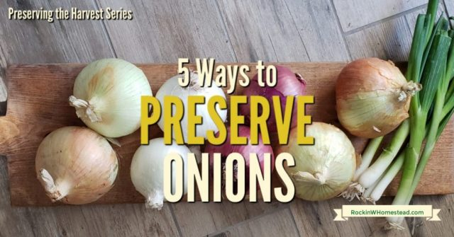 onions with text overlay 5 Ways to Preserve Onioins