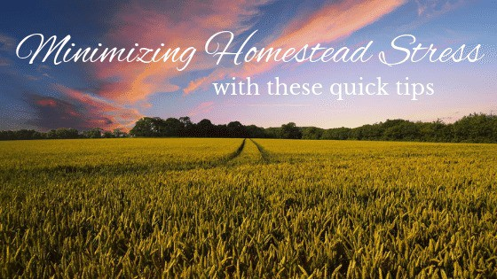 field of hay with text overlay Minimizing Homestead Stress with these quick tips