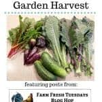 garden harvest with text overlay Planning Dinner from the Garden Harvest