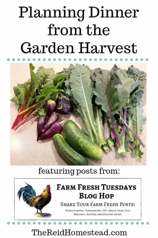garden harvest with text overlay Planning Dinner from the Garden Harvest
