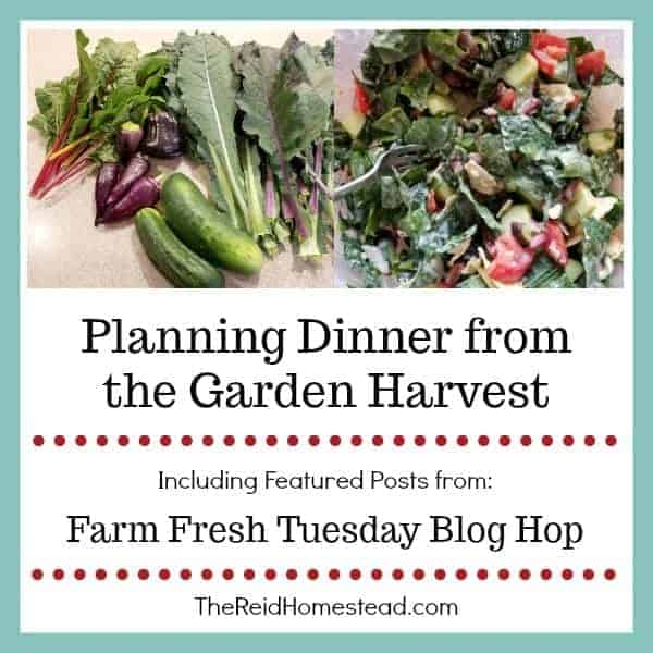 Planning Dinner from the Garden Harvest – Farm Fresh Tuesday (#9)
