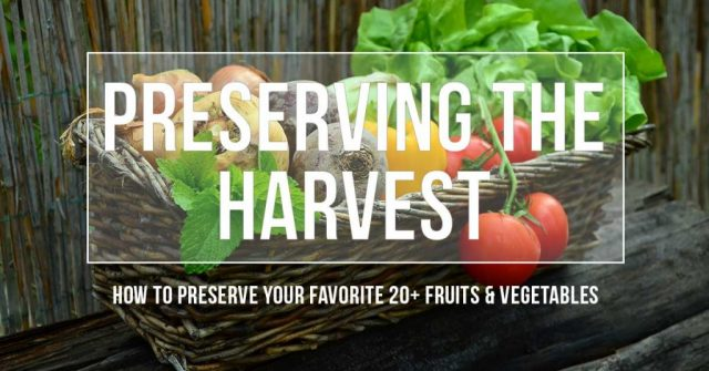 vegetable with text overlay Preserving the Harvest