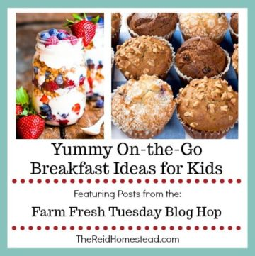 yogurt parfait and muffins with text overlay Yummy On the Go Breakfast ideas for Kids
