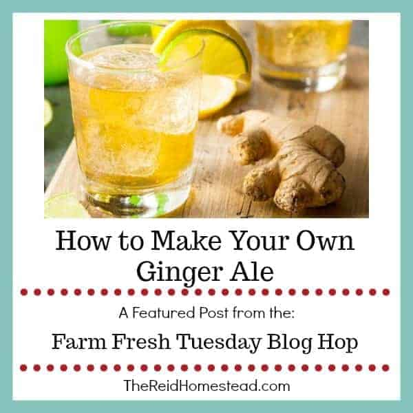 How to Make Your Own Ginger Ale
