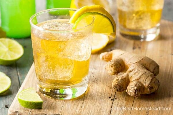 glass of ginger ale with a nob of ginger
