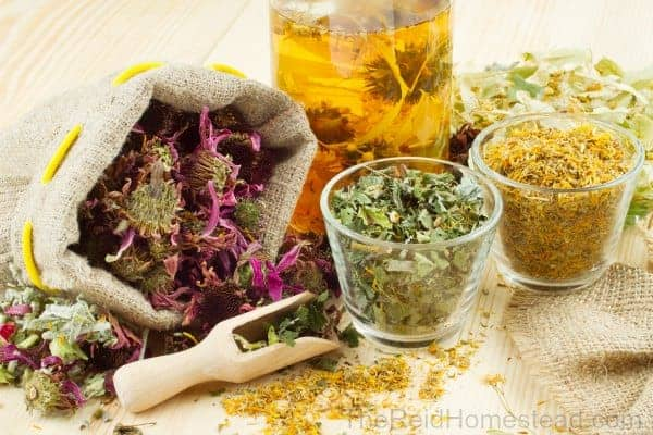 herbal teas in bags and glass jars