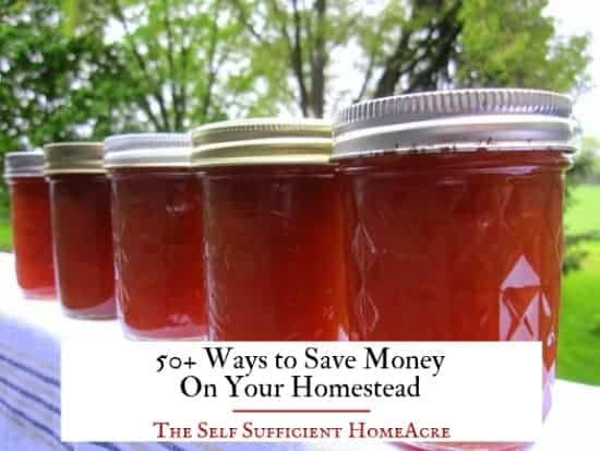 jars of canned jam with text overlay 50+ ways to save money on your homestead