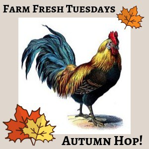 Rooster with maple leaves with text overlay Farm Fresh Tuesdays Autumn Hop!