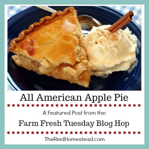 plate with a slice of apple pie and ice cream with text overlay All American Apple Pie