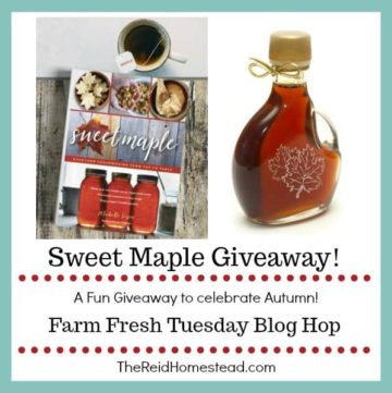 sweet maple book and jar of maple syrup with text overlay Sweet Maple giveaway! from Farm Fresh tuesday blog hop
