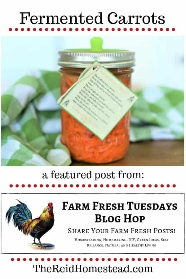 jar of fermented carrots with text overlay fermented carrots a featured post from the farm fresh tuesday blog hop
