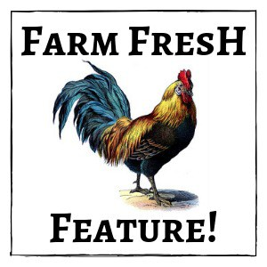 rooster with text overlay Farm Fresh Feature