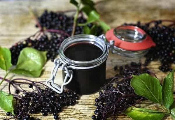 jar of elderberry syrup surrounded by elderberries