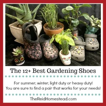 plants and two pairs of crocs with text overlay The 12+ Best Gardening Shoes