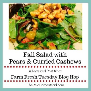 salad with text overlay fall salad with pears and curried cashews