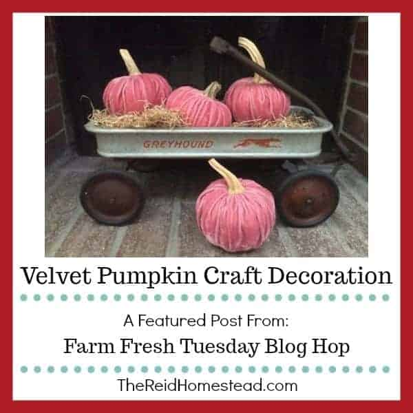 Velvet Pumpkin Craft Decoration