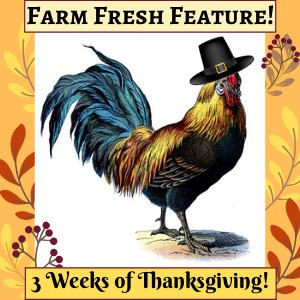 farm fresh featured post image with a rooster with a pilgrim's hat