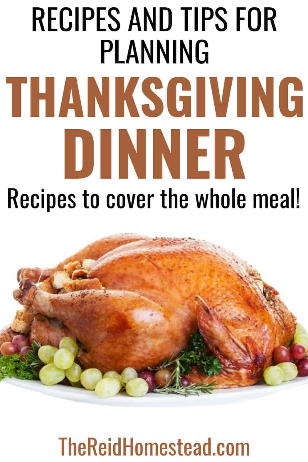 a roasted turkey on a platter with text overlay Recipes and Tips for Planning Your Thanksgiving Dinner