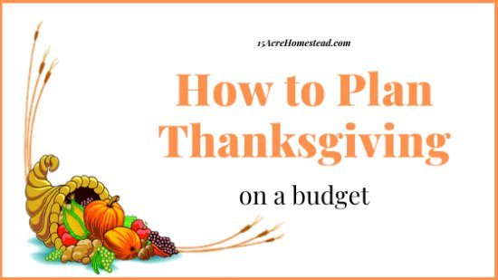 a cornicopia on a white banner with text overlay How to Plan Thanksgiving on a Budget