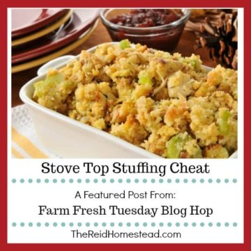 bowl of stuffing with text overlay Stove Top Stuffing Cheat a featured post from the Farm Fresh Tuesday Blog Hop