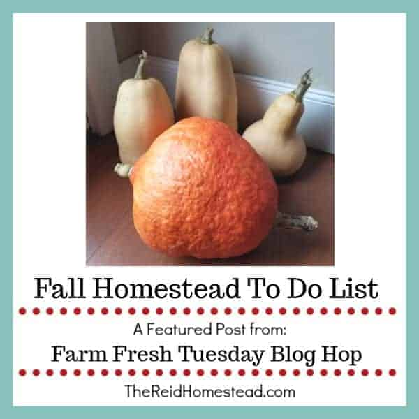 Fall Homestead To Do List