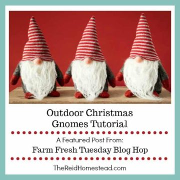 3 christmas gnomes with text overlay Outdoor Christmas Gnomes tutorial