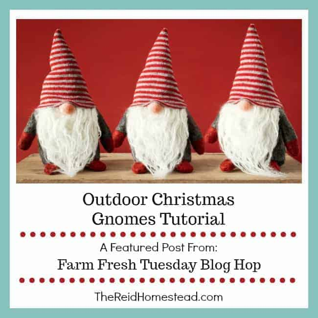 Outdoor Christmas Gnomes Tutorial