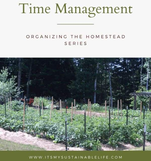 view of a vegetable garden with text overlay Time Management-Organizing the Homestead Series