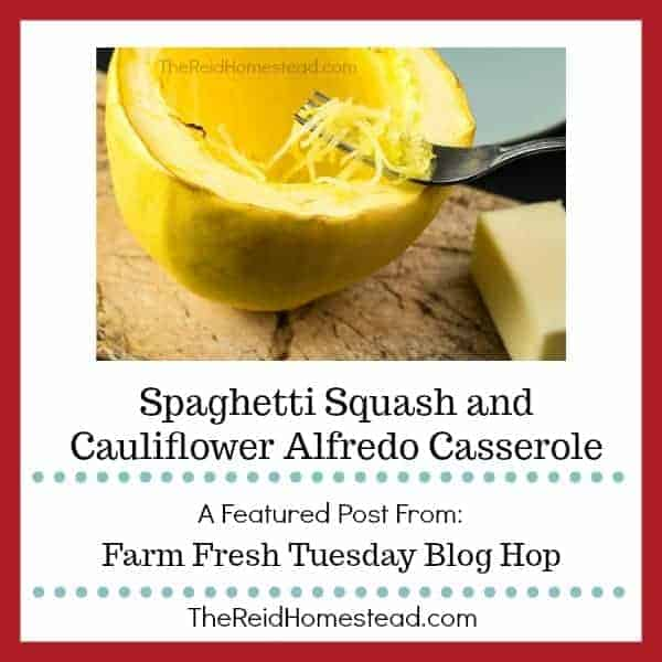 Spaghetti Squash and Cauliflower Alfredo Casserole